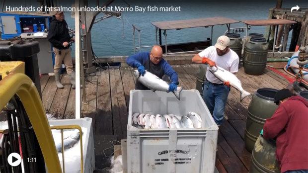 Morror Bay Fishermen